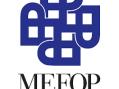 Mefop: welfare privato e i cittadini