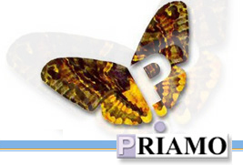 fondo Priamo, più contribuzione aggiuntiva